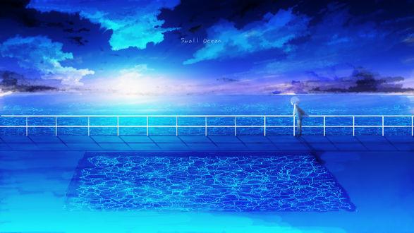 Обои Девочка с крыльями смотрит на закат над океаном, by Y_Y (Small ocean)