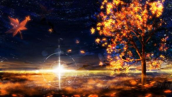Обои Осенний закат, by Y_Y