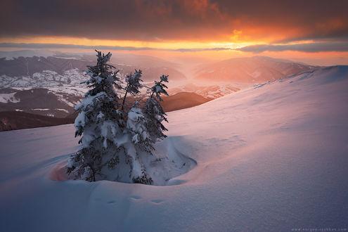 Обои Закат в Карпатах зимой, фотограф Сергей Рыжков