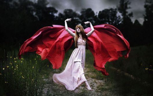 Обои Девушка с крыльями ангела из ткани на фоне природы, by Shelby Robinson