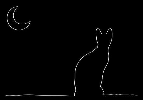 Обои Белый контур кошки и месяца на черном фоне