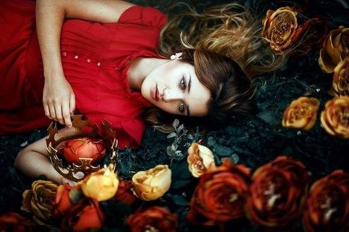 Обои Девушка лежит среди роз, фотограф Ronny Garcia