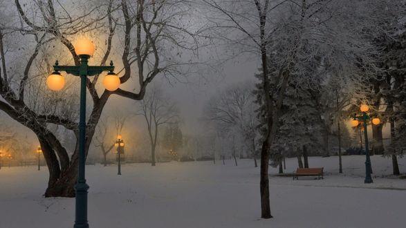 Обои Зимний вечер, дорожка в парке