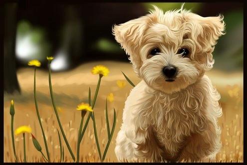 Обои Белый щенок у цветов, by Shilpa Chakraborty