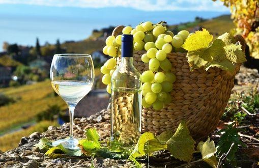 Обои Белое вино в бутылке и фужере, виноград в плетенной корзинке