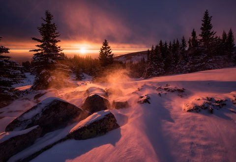 Обои Солнце освещает зимнюю природу, фотограф Емил Рашковски