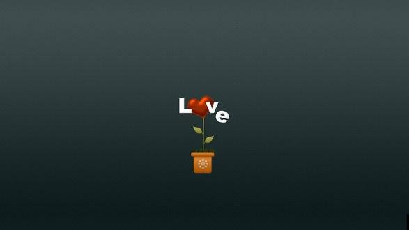 Обои Цветок сердце с надписью love / любовь по среди серого фона