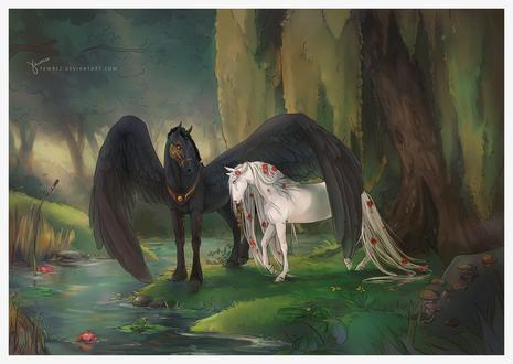 Обои Черная лошадь-пегас своим крылом укрыл белую лошадь, by Yewrezz