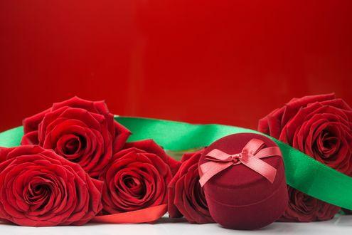 Обои Подарочная коробочка в окружении красных роз с зеленой лентой