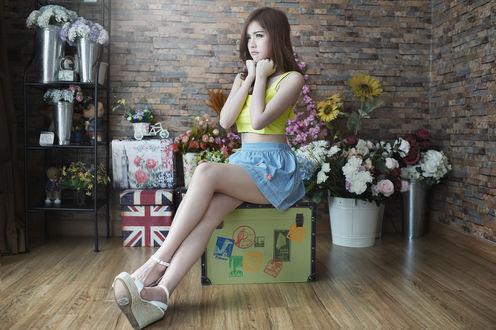 Обои Девушка азиатской внешности с недовольным лицом сидит на чемодане