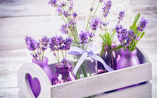 Обои Цветы лаванды в декоративных баночках и подставке с сердцем