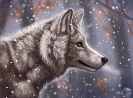 Обои Белый волк под падающим снегом в лесу, by FlashW