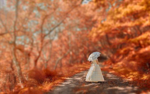 Обои Девочка под белым кружевным зонтиком идет по оранжевой аллее