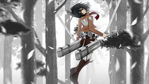 Обои Аниме Вторжение титанов (Shingeki no Kyojin) - Микаса (Mikasa) в полете с двумя мечами