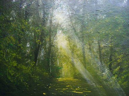 Обои Тропинка, освещаемая солнечными лучами в летнем лесу, by 紫李鳥