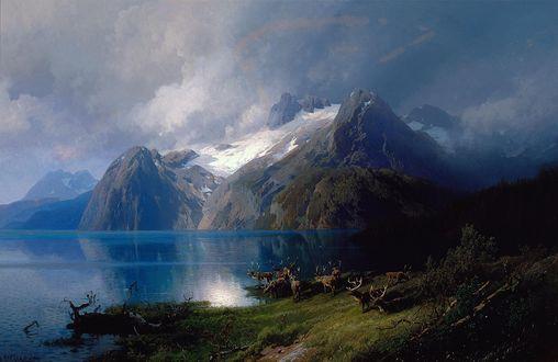 Обои Северные олени на берегу горного озера / Caribou by a Mountain Lake, by Herman Herzog