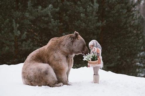 Обои Девочка Полина и медведь Степан, фотограф Ольга Баранцева