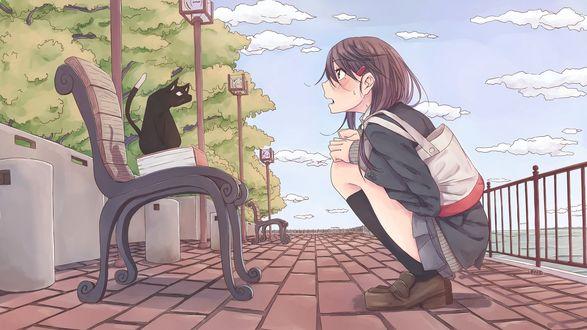 Обои Школьница сидит на корточках на против черного кота, сидящего на скамейке на набережной