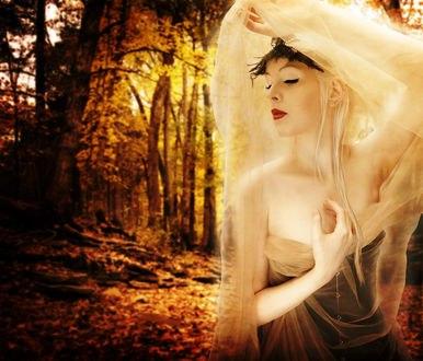 Обои Девушка с опущенными глазами в прозрачной накидке на фоне осеннего леса, by GhostsandDecay