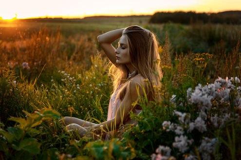 Обои Красивая девушка Вика сидит в траве