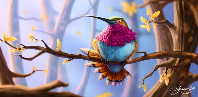 Обои Разноцветная птица сидит на ветке, by Isaque P. G