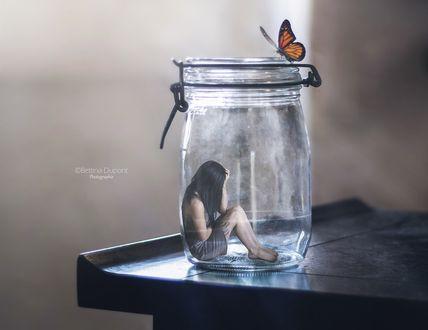 Обои Девушка в банке, на которой сверху сидит бабочка