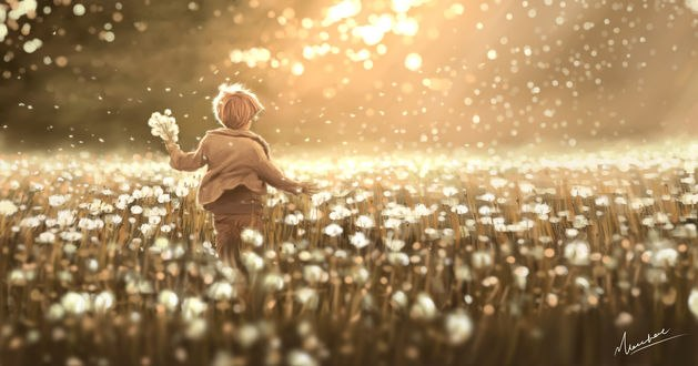 Обои Мальчик в поле из одуванчиков, автор Kanos