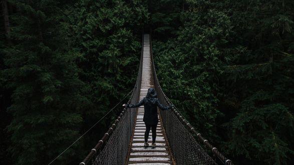 Обои Человек в плаще стоит на подвесном мосту среди зарослей