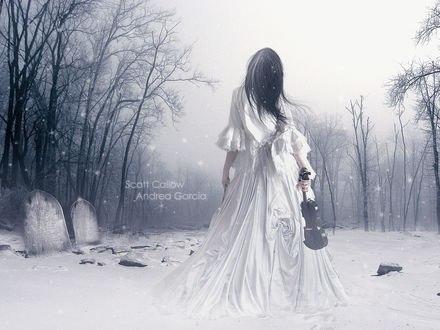 Обои Девушка-скрипачка в заснеженном мире среди голых деревьев и могил (scott callow, andrea garcia)