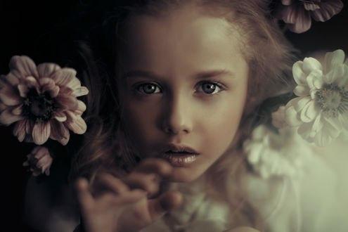 Обои Красивая девочка в цветах, фотограф Валерия Мытник