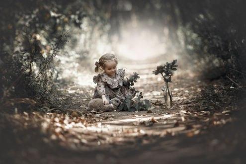Обои Маленкая девочка сидит на земле с осенними листья гладя кролика, рядом стоит бутыль с веточками, фотограф Валерия Мытник