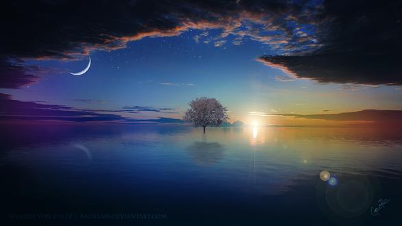 Обои Одинокое дерево стоит в воде на фоне яркого солнца, by GeneRazART