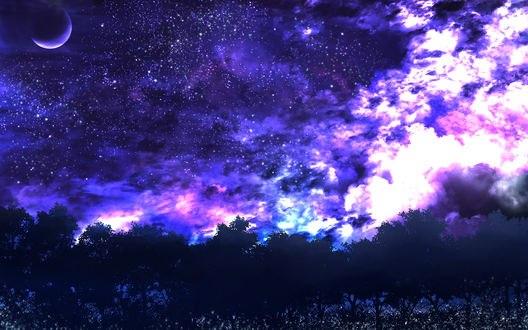 Обои Деревья на фоне ночного звездного неба, by saya