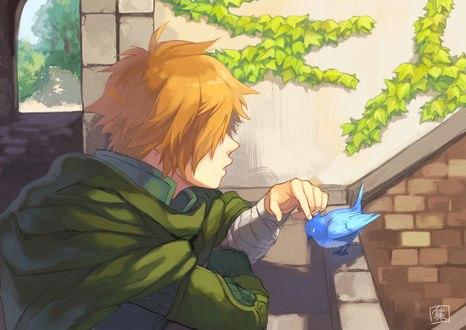 Обои Archer / Арчер гладит синюю птичку, из игры Fate / Grand Order / Судьба / Великий приказ, by Pixiv Id 22435391