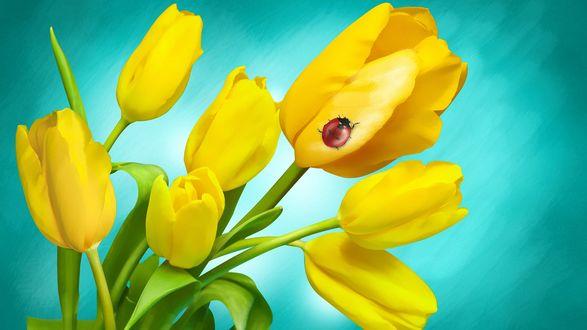 Обои Желтые тюльпаны, по одному из которых ползет божья коровка