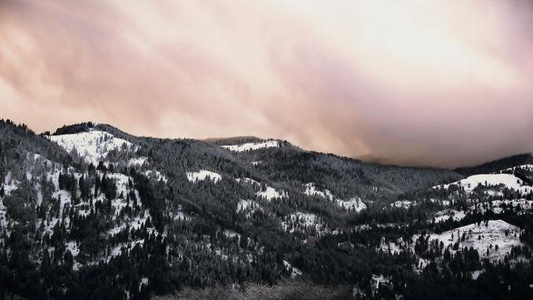 Обои Черно-белые горы, покрытые лесом, на фоне туманного неба в розово-золотистых тонах