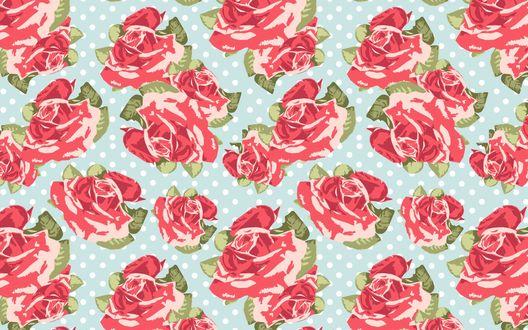 Обои Много красных роз