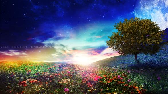 Обои Дерево на цветочном поле, на фоне яркого неба с облаками, by GeneRazART