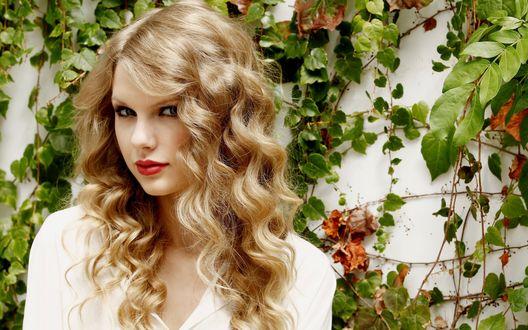 Обои Певица Тейлор Свифт / Taylor Swift с длинными волнистыми волосами, стоит на фоне стены, увитой плющом