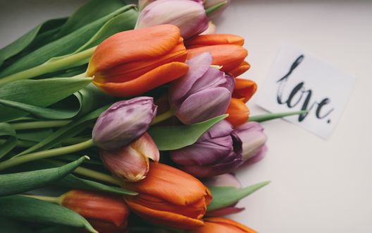 Обои Букет тюльпанов и записка с надписью (love / любовь)