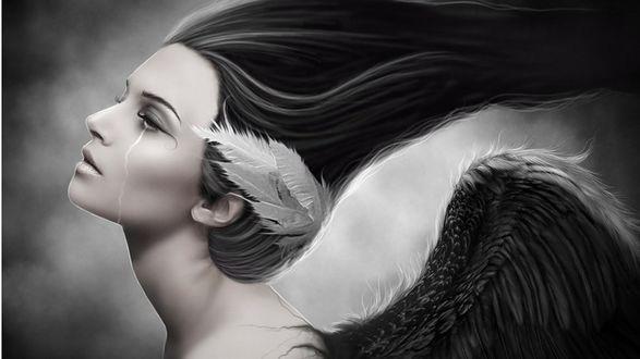 Обои Девушка в образе птицы со слезой