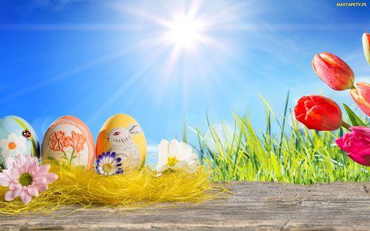 Обои На столе лежат разноцветные пасхальные яйца, на фоне неба, солнца, травы и цветов