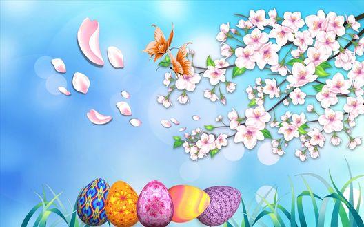 Обои Разноцветные пасхальные яйца в траве, под цветущей веточкой, на которой порхают бабочки, на фоне голубого неба