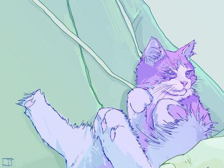 Обои Кошка лежит на руках, by PHAZED