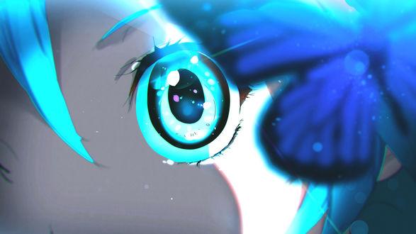 Обои Крупным планом синяя бабочка и глаз Вокалоид Хатсуне Мику / Vocaloid Hatsune Miku, by moxie2D