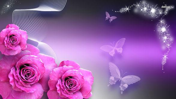 Обои Розовые розы, на фоне с текстурными линиями и бабочками