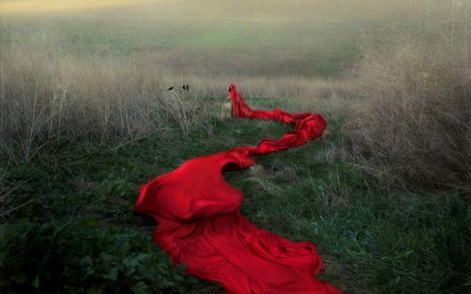 Обои Девушка в красном плаще, с длинным шлейфом, уходит вдаль, на фоне природы и тумана. Фотохудожник Tina Schultz