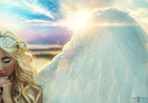 Обои Девушка-ангел на фоне заката, by Olga Granina