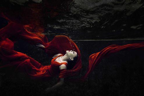 Обои Девушка в красном платье под водой, фотограф Lau Yew Hung