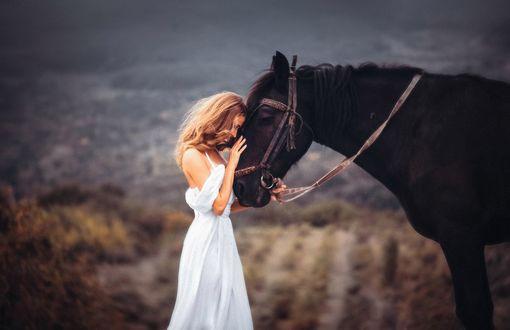 Обои Девушка в белом платье положила голову на морду коня, на размытом природном фоне. Фотограф Роман Гутиков